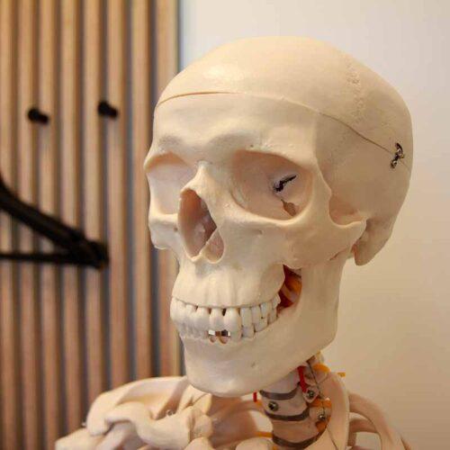 osteopati-tørring-sundhedshus